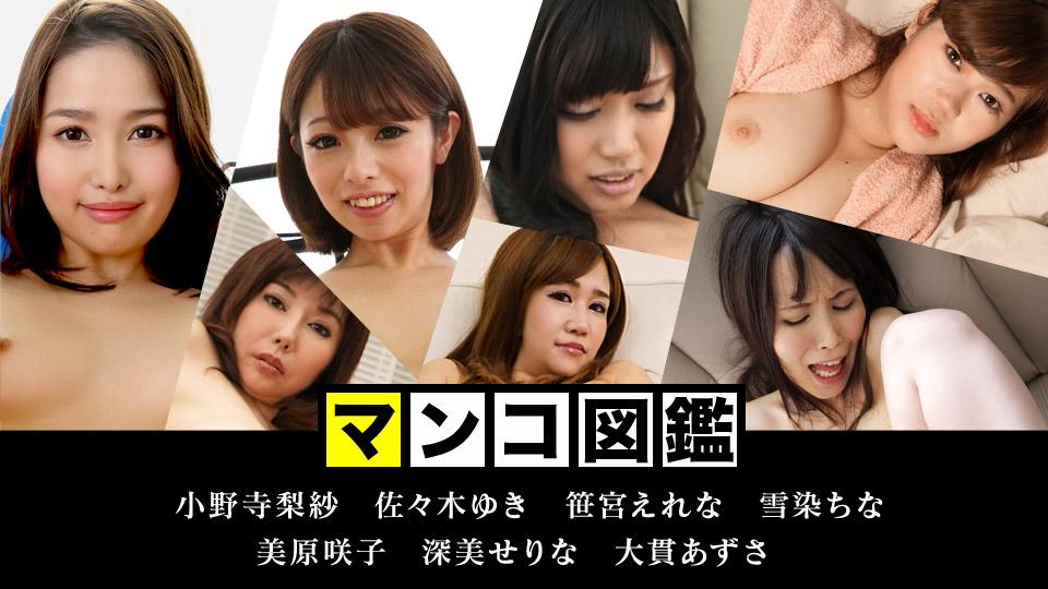 商品画像:マンコ図鑑 〜これがカリビの醍...